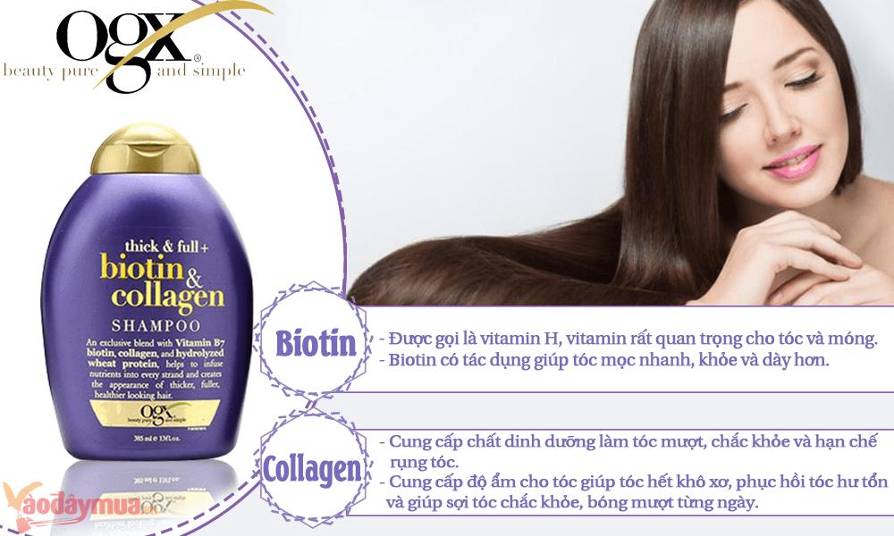 Thành phần cấu tạo nên combo dầu gội Biotin & Collagen của Mỹ