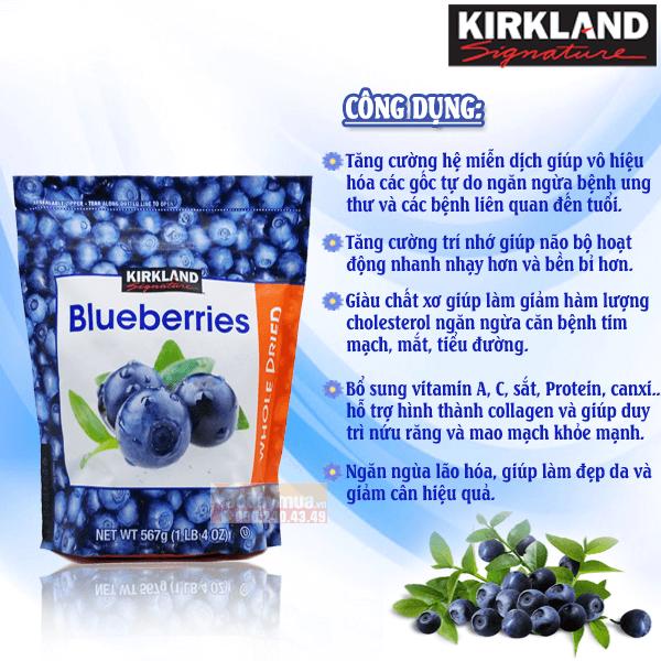 Công dụng chính từqủa việt quất Kirkland Organic Blueberries