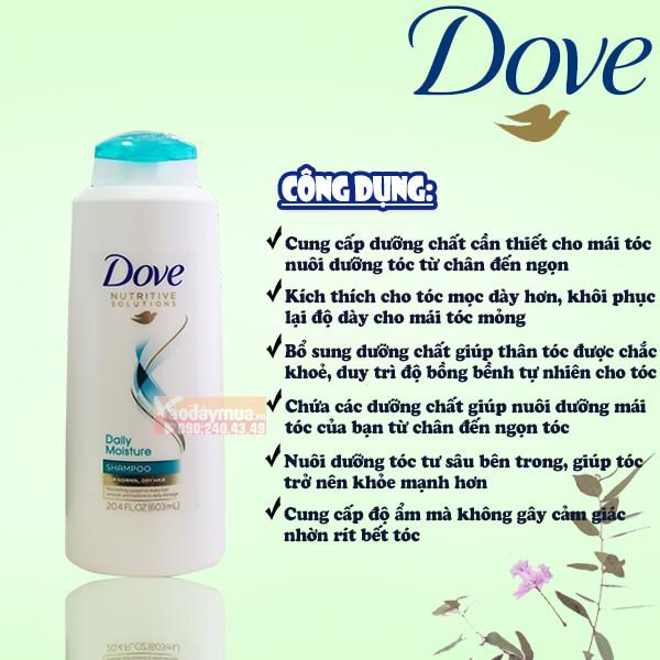 Công dụng chính của dầu gội Dove Daily Moisture
